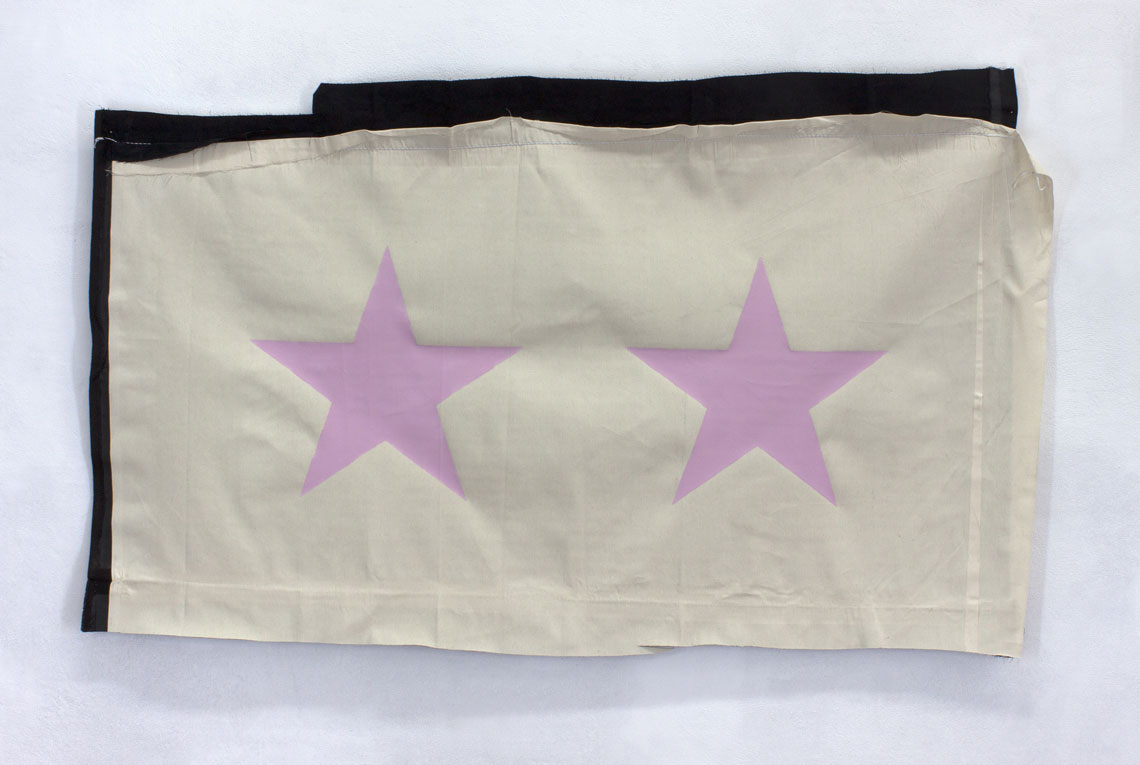 pink stars on a flag